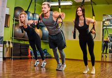 Group of people exercising with suspension straps in fitness club. royalty free stock images
