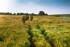 Group of people going into the distance on a green field with tall grass during sunrise. Visible path on the grass field Royalty Free Stock Images
