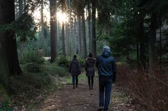 Group of people going for a walk in forest with magical sunset behind the trees.  Royalty Free Stock Photography