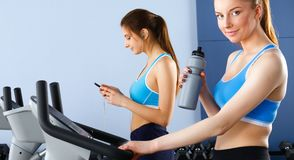 Group of people at the gym exercising on cross trainers.  Royalty Free Stock Photo