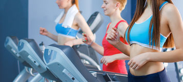 Group of people at the gym exercising on cross trainers Royalty Free Stock Images