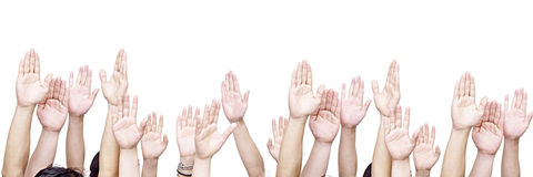 Group of people with hands up. Large group of people raising their hands, isolated on white background stock image
