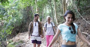Group of People Hiking In Forest Talking Happy Smiling, Mix Race Tourists Men And Women On Trekking Route During. Vacation Slow Motion 60 stock footage