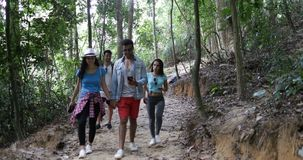 Group of People Hiking In Forest Use Map On Cell Smart Phone, Tourists Team On Trekking Route. Slow Motion 60 stock video footage