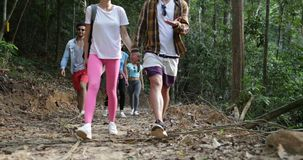 Group of People Hiking Walking In Forest Talking, Tourists Team Trekking Route During Vacation. Slow Motion 60 stock video