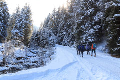Group of people hiking on wintery snowy path in Stubai Alps mountains and small river Royalty Free Stock Photography