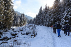Group of people hiking on wintery snowy path in Stubai Alps mountains and small river Stock Photo
