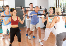 Group Of People Lifting Weights Stock Images