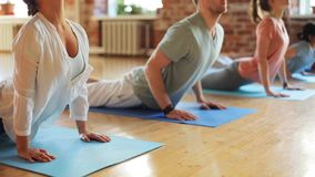 Group of people making yoga exercises in gym. Fitness, sport and healthy lifestyle concept - group of people making yoga exercises on mats in gym stock video footage