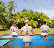Group of people making yoga exercises outdoors Royalty Free Stock Photos