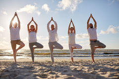 Group of people making yoga in tree pose on beach. Yoga, fitness, sport and healthy lifestyle concept - group of people in tree pose on beach stock photos