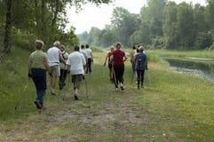 Group of people Nordic walking stock photo