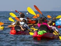 Group of people paddling in kayaks Royalty Free Stock Image