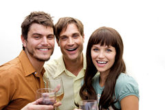 Group of people at a party Royalty Free Stock Photo