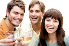 Group of people at a party Royalty Free Stock Images