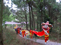 Group of people performance lion dance Royalty Free Stock Photo