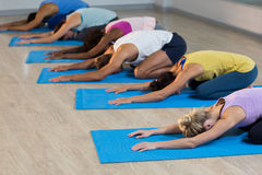 Group of people performing yoga Stock Images