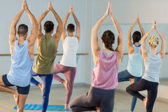 Group of people performing yoga Stock Image