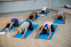 Group of people performing yoga Stock Photo
