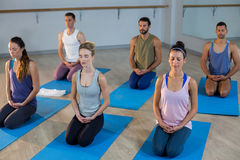 Group of people performing yoga Stock Photography