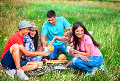 Group people on picnic Royalty Free Stock Photos