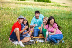 Group people on picnic Stock Photos