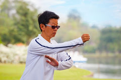 Group of people practice Tai Chi Chuan in a park Royalty Free Stock Photos