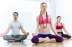 Group of people practicing yoga at home in the lotus position. Royalty Free Stock Images