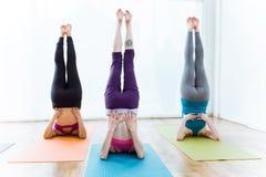 Group of people practicing yoga at home. Sarvangasana pose. Stock Image