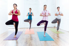 Group of people practicing yoga at home. Vrksasana pose. Stock Photos