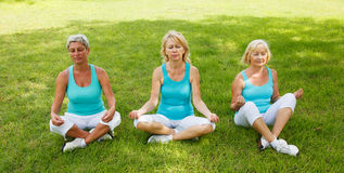 Group of People practicing yoga Stock Photography