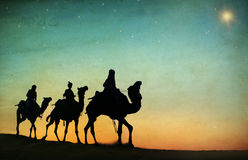 Group People Riding Camel on the Desert Royalty Free Stock Photography