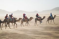 Group of People Riding on Camel on the Desert Royalty Free Stock Photography