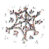 Group people  shape  snowflake Stock Image