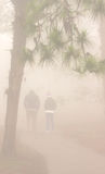 Group people silhouette walking running fog,Phurua,Thailand. Royalty Free Stock Photo