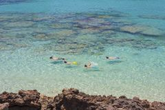 Snorkeling in the crystal clear waters Royalty Free Stock Images