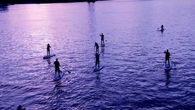 A group of people surfing with stand up paddle boards at beautiful sunset 3 stock footage