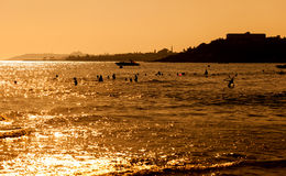 Group of people swimmong in sea at sunset Stock Photography