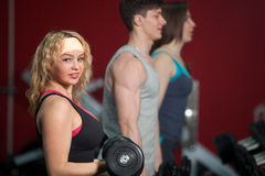 Group of people training with freeweights in fitness center Stock Photography