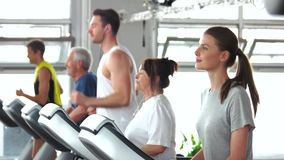 Group of people training on treadmill. Young woman exercising at gym. Sport for all ages stock footage