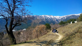 A group of people travelling into the distance towards the mountains with snow-capped peaks . Beautiful tree in the foreground. Stock Image