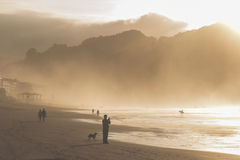 A group of people trek along the wet shore at dusk. Stock Photos