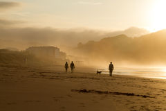 A group of people trek along the wet shore at dusk. Stock Photography