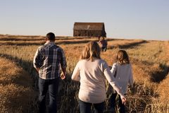 Group of People Walking on a Hay Field during Day Time Stock Images