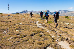 Group of people walking mountains meadow. Backpackers group walking ascending mountains range meadow. Rila national park, Bulgaria treking Stock Images