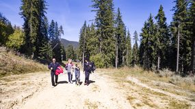 Group of people walking in summer royalty free stock image
