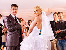 Group people at wedding dance. Royalty Free Stock Photo