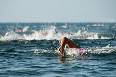 Group people in wetsuit swimming. At triathlon stock photo