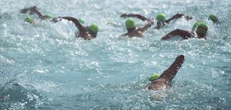 Group people in wetsuit swimming. At triathlon royalty free stock photography