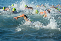 Group people in wetsuit swimming at triathlon Royalty Free Stock Image